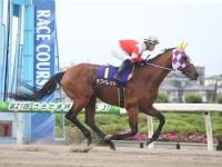 【JRA】ラブバレットが美浦の加藤和宏厩舎に移籍 2度の岩手年度代表馬