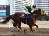 【大井・金盃】GI馬サウンドトゥルーが登場/レースの見どころ(地方競馬)