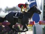 【クイーンC】上位人気2頭は阪神JFの2・3着馬/JRA重賞予想オッズ