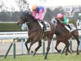 【京都6R新馬戦】5番人気メイショウハナグシが初陣飾る/JRAレース結果