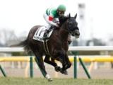 【東京6R新馬戦】テイクザヘルムが差し切り新馬勝ち/JRAレース結果