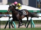 【小倉大賞典】登録馬 スティッフェリオ、クロコスミアなど16頭