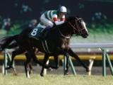 【次走】金鯱賞へ向かうリスグラシュー 鞍上はA.シュタルケ騎手
