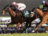 【中山牝馬S想定】GI馬アドマイヤリード、GI2着馬ミッキーチャーム、クロコスミアなど