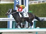 【阪神6R新馬戦】11番人気のシェパードボーイが突き抜けV/JRAレース結果