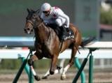 【中山牝馬S】秋華賞2着馬ミッキーチャームに注目/JRAレースの見どころ