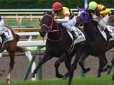 【JRA】レヴァンテライオンが加藤士津八厩舎に転厩、2016年函館2歳S勝ち馬