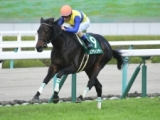【次走】エアウィンザーは浜中俊騎手で大阪杯へ
