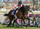 【高松宮記念】春の短距離王はミスターメロディ! 2・3着には2桁人気馬が入線/JRAレース結果