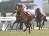 【次走】クリンチャーは引き続き三浦皇成騎手で天皇賞・春へ