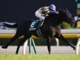 【次走】須貝尚介厩舎のロジクライ&リナーテは京王杯SCへ