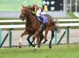 【阪神牝馬S】ラッキーライラックが人気の中心/JRAレースの見どころ