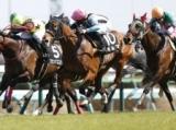 【山藤賞】ギルマがゴール前の大接戦を制す/JRAレース結果