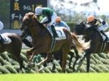 【次走】クリノガウディーはNHKマイルCへ、鞍上は引き続き藤岡佑介騎手