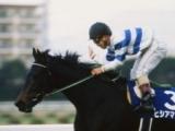 女傑ヒシアマゾンが死亡、28歳 GI・2勝、1994年有馬記念でナリタブライアンの2着