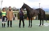 【JRA】ヴォージュは右前浅屈腱不全断裂の診断 天皇賞・春で競走中止