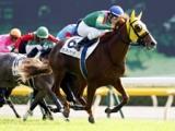 【京都新聞杯】令和初のJRA重賞を制するのは/JRAレースの見どころ