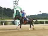 【佐賀スプリングC】グレイトパールが断然人気に応え5馬身差V/地方競馬レース結果