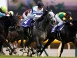 【ヴィクトリアマイル】ノームコア&レーン騎手がV 売上は158.2億円で前年比増