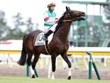 【先週のJRA抹消馬】きさらぎ賞2着馬レプランシュ、ゴールドシップ全弟トレジャーマップなど