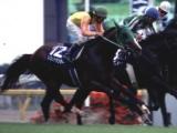 【安田記念】競馬ファンが選ぶ「歴代最強の安田記念馬」は? アンケート中間発表!