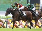 【マーメイドS】登録馬 フローレスマジック、ランドネなど17頭