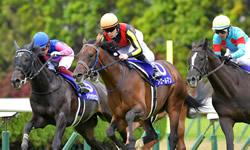 フィエールマン 凱旋門賞参戦が正式決定 鞍上ルメールで札幌記念を前哨戦に