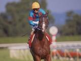 シルクジャスティスが死亡、25歳 1997年有馬記念を藤田伸二騎手とのコンビで制覇
