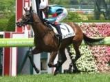 【阪神5R新馬戦】ルーチェデラヴィタがV キズナ産駒のJRA初勝利!/JRAレース結果