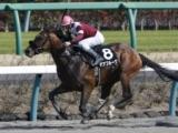 【ユニコーンS】ダート王への登竜門、あの馬の巻き返しを期待/JRAレース展望