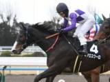 【JRA】15日(土)は70頭以上が競走除外に 競走馬の飼料から禁止薬物検出