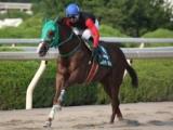 【JCS・ファイナルステージ第2戦】連勝で大逆転の総合優勝!吉村智洋騎手が1番人気ロジキャロルでV/地方競馬レース結果