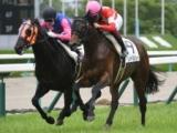 【阪神5R新馬戦】レッドベルジュールが競り合いを制して新馬勝ち/JRAレース結果