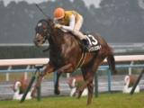 【CBC賞】登録馬 セイウンコウセイ、アレスバローズなど14頭