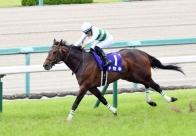 【宝塚記念】キセキ銀 2戦連続&G1・3度目…川田「勝った馬が強かった」