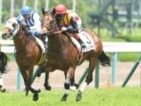 【CBC賞】3歳牝馬アウィルアウェイは51.0kg、GI馬セイウンコウセイは58.0kg/JRA重賞ハンデ確定
