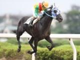 【地方競馬】小久保智調教師が地方競馬通算1276勝 南関東最多タイ記録に