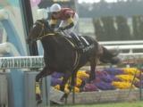 【地方競馬】新種牡馬エーシンジーライン産駒が初勝利 初年度産駒は4頭