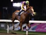 【川崎・湘南ひらつかOP】ロイヤルパンプが人気に応え圧勝で移籍後初V/地方競馬レース結果