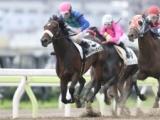【地方競馬】森泰斗騎手がオモイデイロイロで地方競馬通算2600勝を達成!