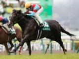 【次走】ブレイキングドーンは神戸新聞杯を視野、ラジオNIKKEI賞で重賞初制覇