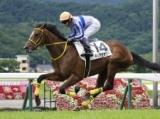 【福島5R新馬戦】ディアセオリーが人気に応え完勝/JRAレース結果