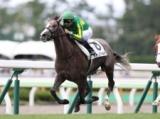 【函館5R新馬戦】サトノゴールドがV ゴールドシップ産駒初勝利/JRAレース結果