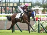 【中京6R新馬戦】ダンツウィザードが逃げ切り新馬勝ち/JRAレース結果
