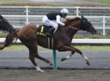 【名鉄杯】スマハマが断然人気に応え逃げ切りV/JRAレース結果