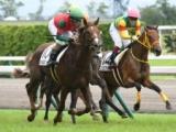 【中京5R新馬戦】マイネルグリットが差し切り新馬勝ち/JRAレース結果
