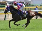 【クイーンS】メイショウショウブは唯一の3歳馬、斤量51kg