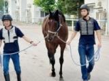フィエールマン、ブラストワンピース函館入厩 ワンピース鞍上は川田に