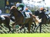 【次走】クリノガウディーは戸崎騎手との再コンビで京成杯AHへ