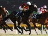【関屋記念】ロシュフォール 鞍上田辺騎手は3週連続重賞制覇へ